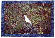 Joseph Raffael Watercolor Paintings made in 2003